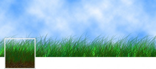 Grass - FB Cover Photo and Profile Pic
